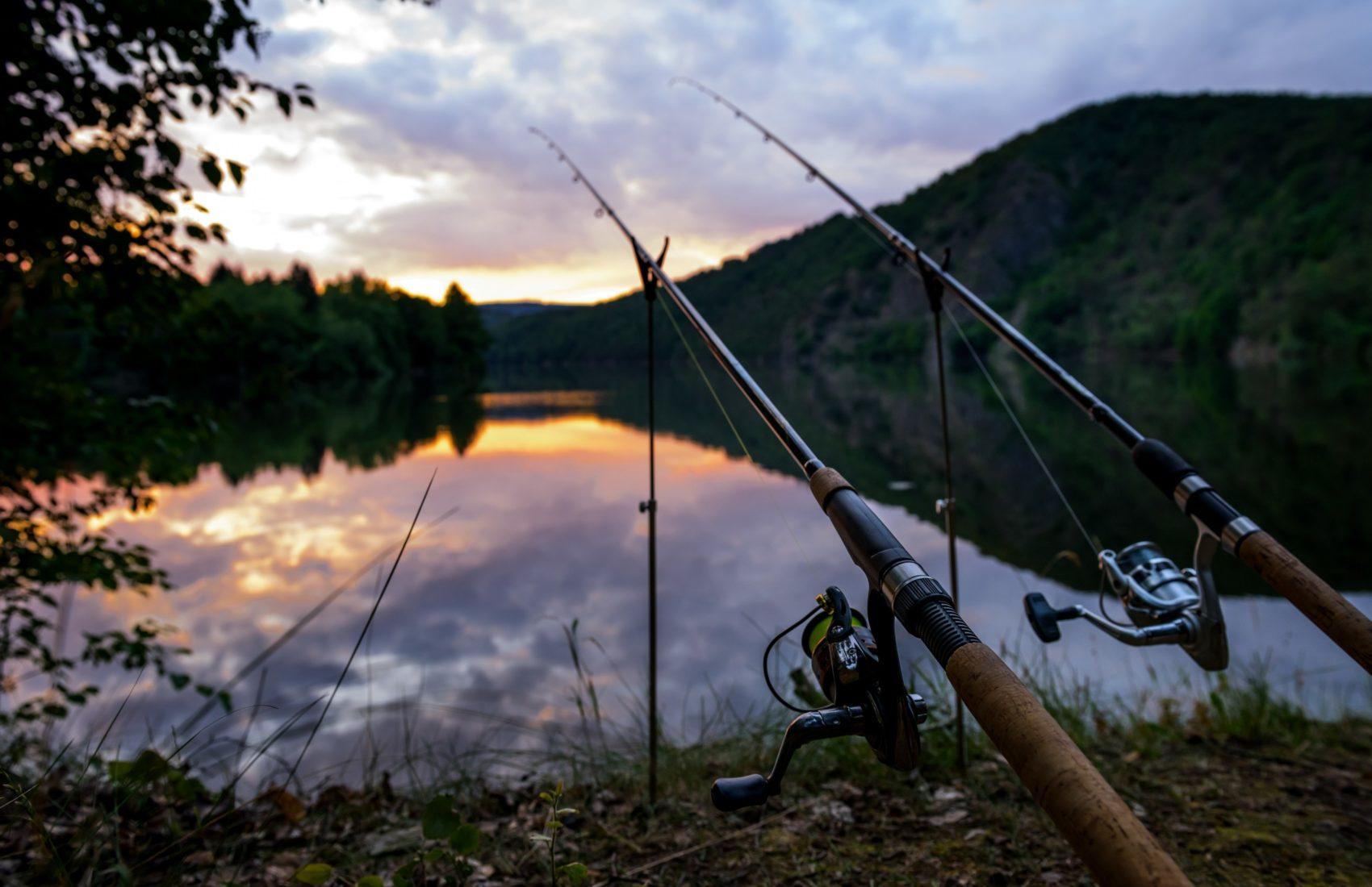 fishing-concepts-fishing-rods-river-morning-czech-republic